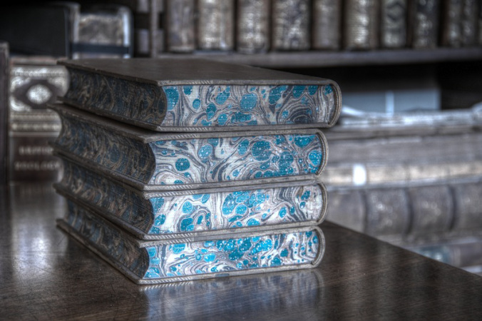 Blue Books, 2013 (Photograph by Carla H. Krueger)