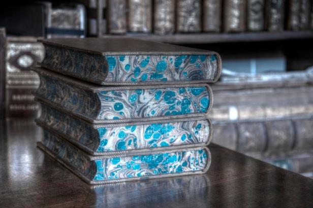 Blue Books, 2013 (Photograph by Carla H. Krueger)